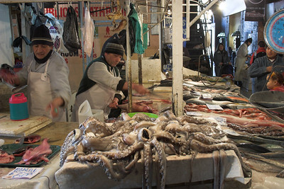 Octopus, Mercado Central, Santiago de Chile
