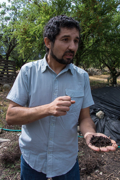 Paulo extolls the virtue of compost at Antiyal; a biodynamic vine yard.