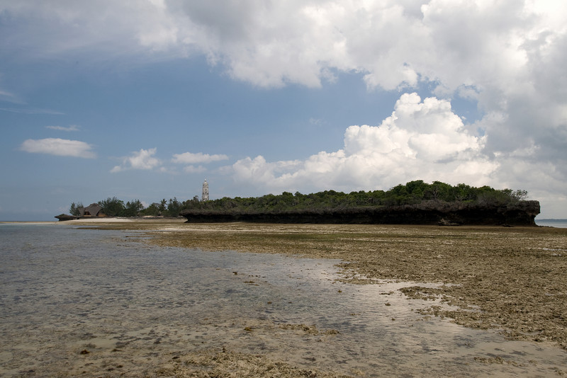 At low tide, the intertidal reef is exposed.