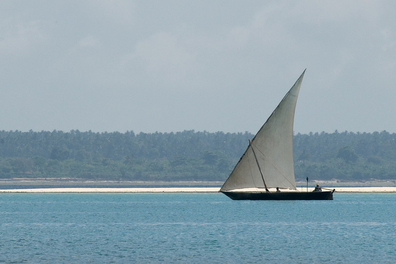 A dhow sails along the coast of Zanzibar.