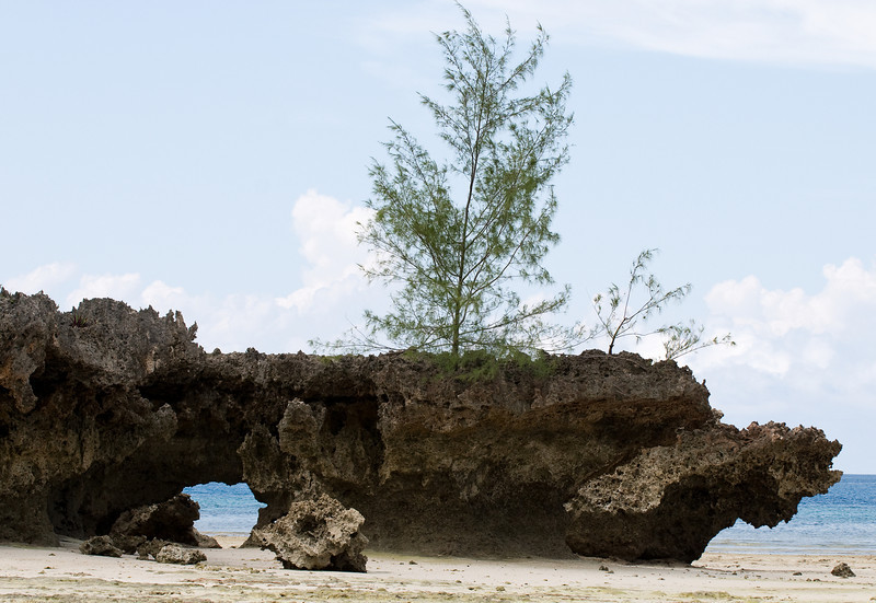 The island is formed by fossilized coral.