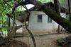 Jane Goodall's house.