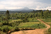 The road leading to the Chagga village - Mt. Kilimanjaro is in the background.