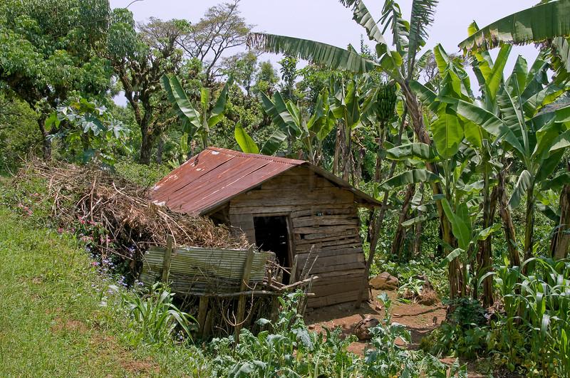 Chagga village home.