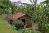 Chagga village home.