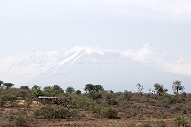 Mt. Kilimanjaro.