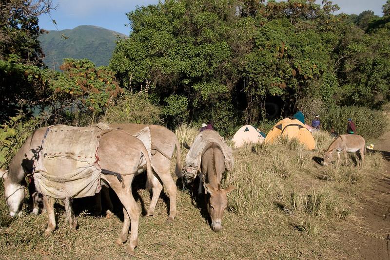 Embakai Crater campsite.