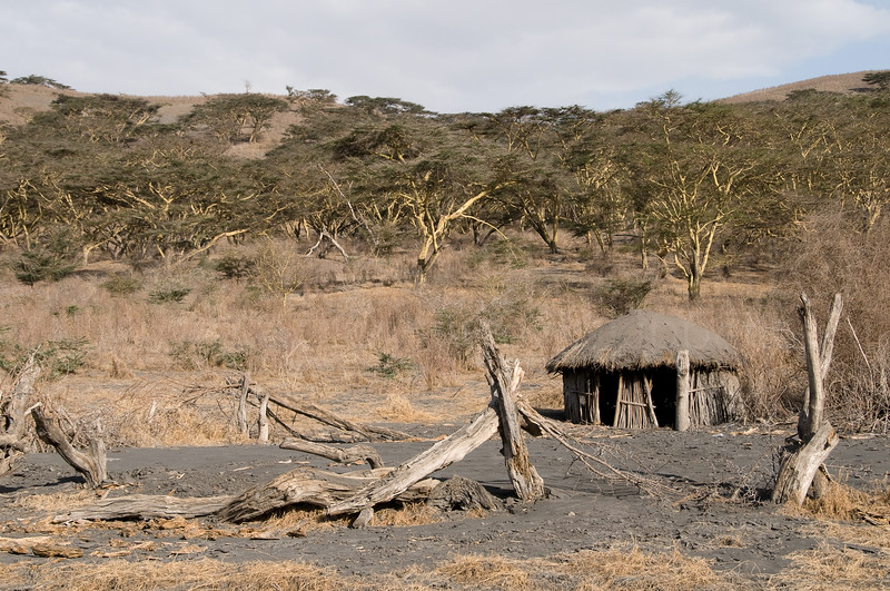 A boma at acacia camp - covered with volcanic ash from the 2008 eruption.