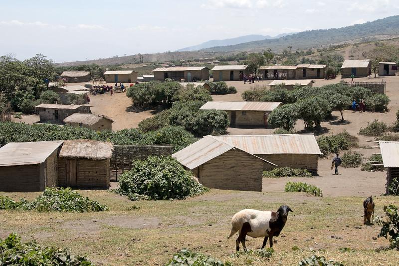 The village of Nayobi.