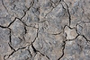 The surface of the dry bed of Lake Natron crunches under foot.  But moisture is not far below.