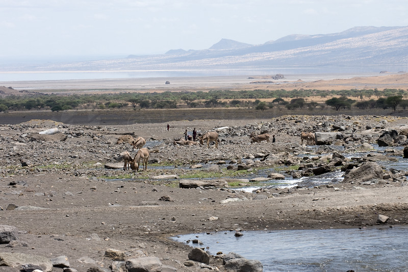 The Engare Sero river at the end of the dry season.