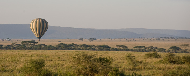 Hot air balloon over the Serengeti.