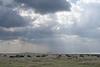 The beautiful Serengeti.