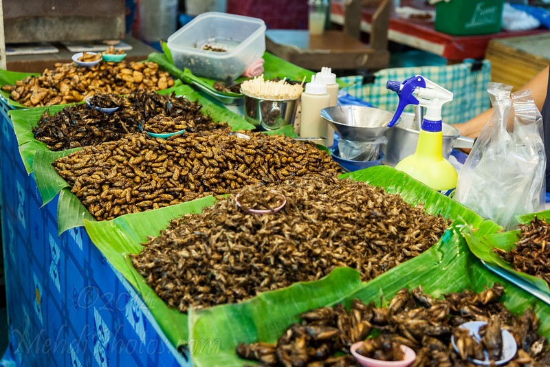 Eating insects in Phuket's Big Weekend Market