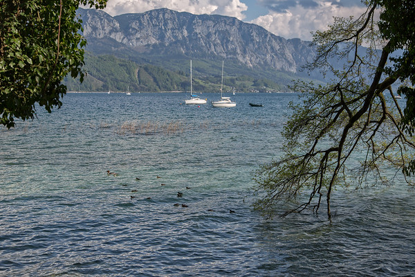 Frühling am Attersee - Spring at the Lake Attersee