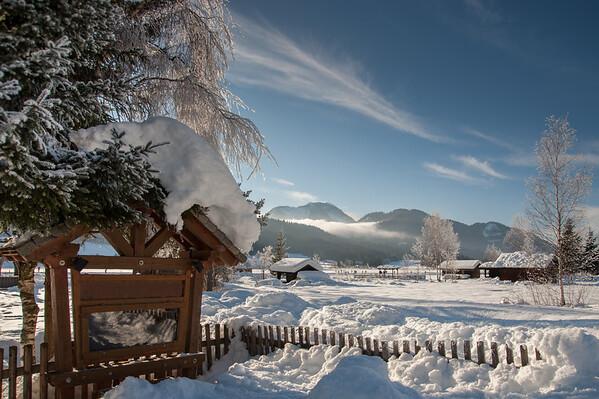 Sunny winter morning