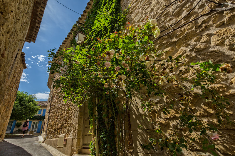 House facade with roses in Lourmarin