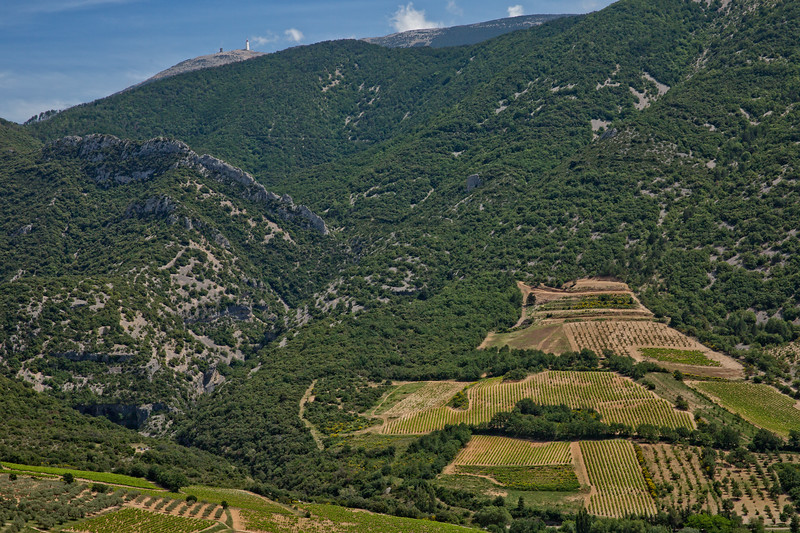 At the Foot of Mont Ventoux