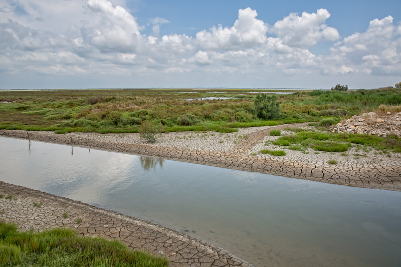 Dried river in the Camargue