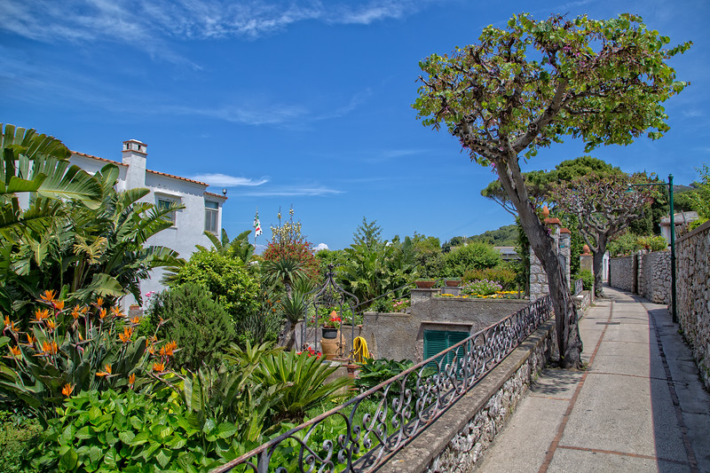 Beautiful footpath full of trees and flowers on Capri Island