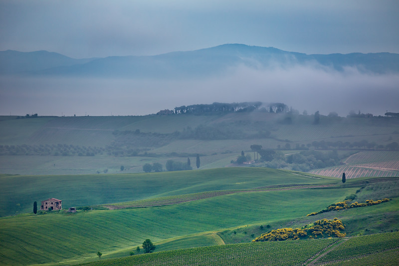 Tuscany landscape in the fog.