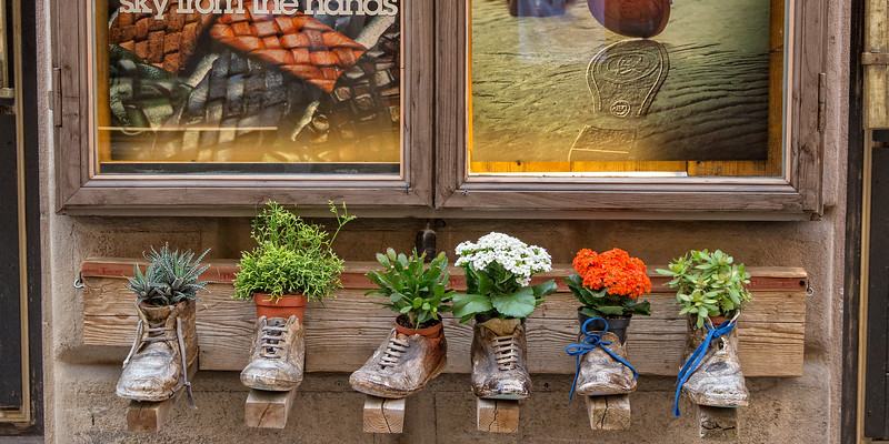 Old boots used as flower pots.