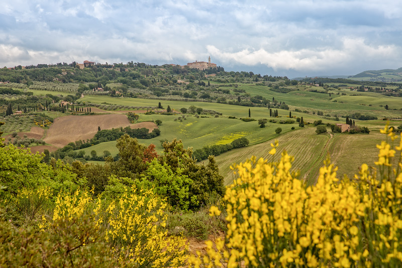 The rolling hills and green fields in Tuscany