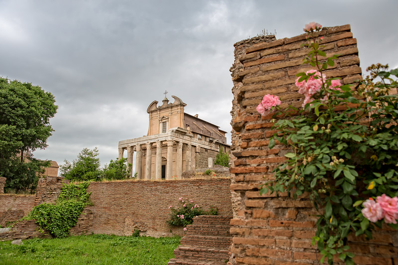 Scenic view of the Temple of Antoninus and Faustina in Roman Forum
