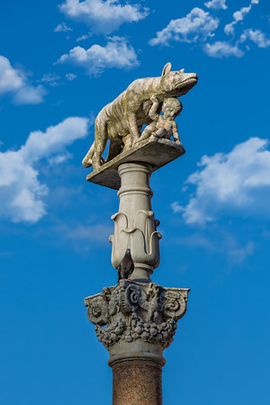 Statue of the Capitoline Wolf in front of Siena Cathedral