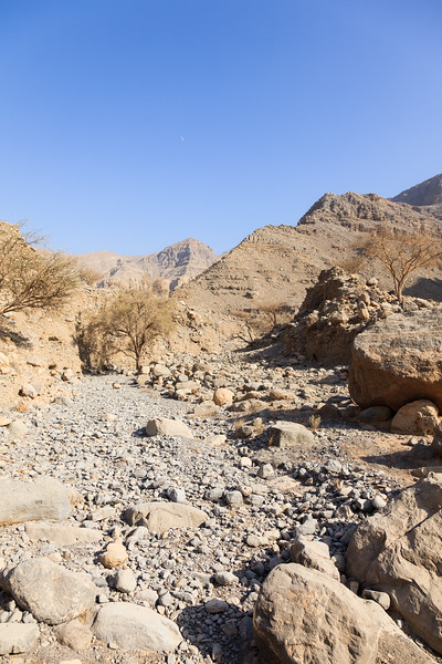An overview of a dried river with dry trees visible in the banks of the river in the mountainous area of Jebel Jais.