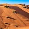 A sand dune close to Sharjah, UAE in an off road track.