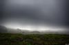 Fog over the Pacific Coast