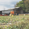 Ganyard Hill Farm