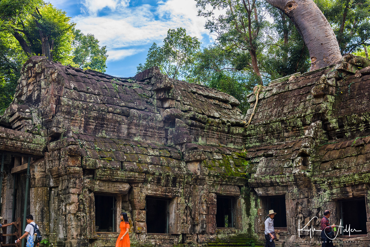 Ta Prohm Temple has been left mostly in a state of nature.