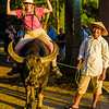 Mary chalks up another life experience by riding a water buffalo.  Don't try this at home, kids.