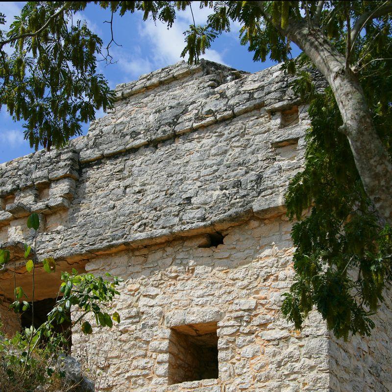 15 Dzibilchaltun Ruins 01-Mar-2005- 2110