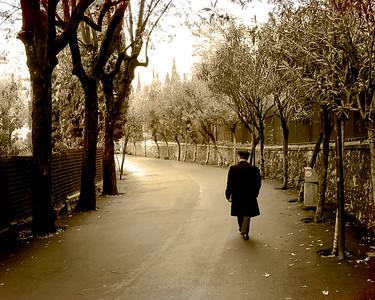 Solitary Walk Home