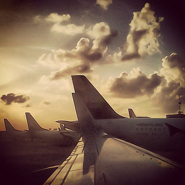 Travel dreams, wings and tails