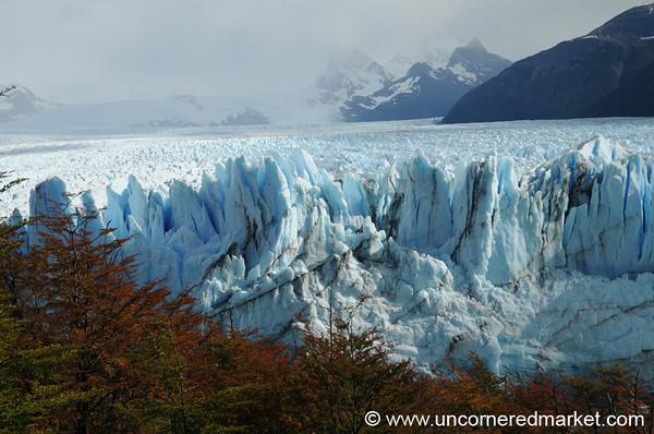Perito Moreno Glacier Near El Calafate in Fall Colors - Argentina