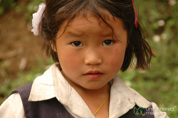 Cautious Look - Sikkim