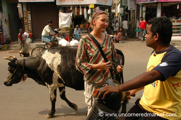 Conversing on the Street - Chennai, India