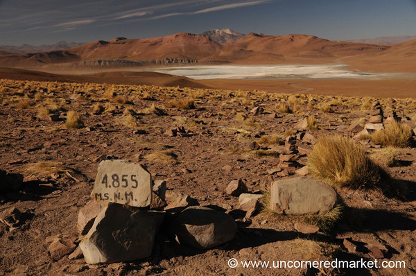 High Desert Desolation - Salar Tour, Bolivia