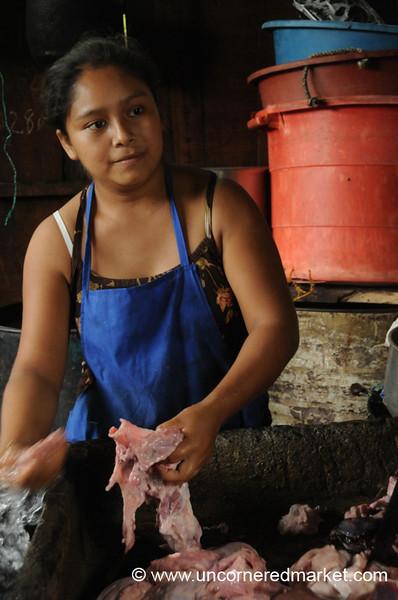 Beauty and the Beast - Masaya, Nicaragua