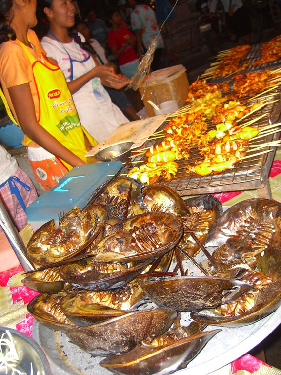 Horseshoe Crabs and Grilled Squid - Ranong, Thailand