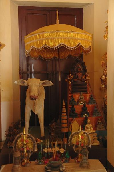 Cow Altar - Phnom Penh, Cambodia