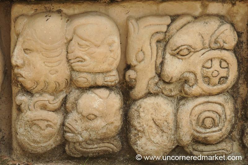Copan Ruins, Animal Hieroglyphs - Honduras