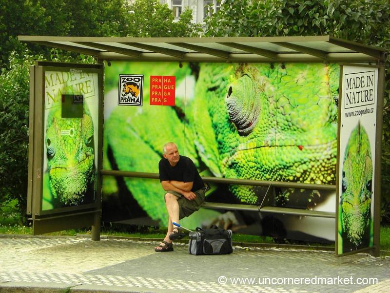 Colorful Tram Stop - Prague, Czech Republic