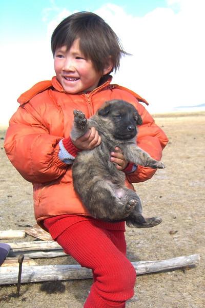 Kyrgyz Girl with Puppy - Song Kul Lake, Kyrgyzstan