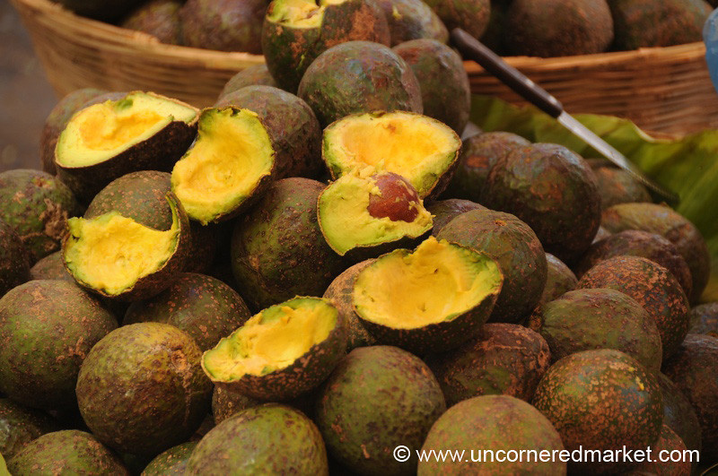 Avocados for Guacamole - Xela, Guatemala
