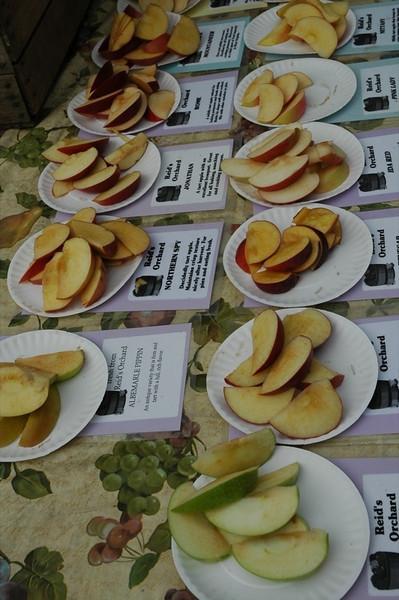 Apple Slices - Nottaway Park, Virginia